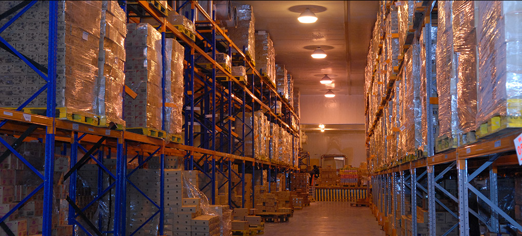 Unlock the potential of your warehouse
